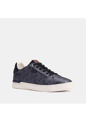 Lowline Low Top Sneaker With Horse And Carriage Print in Blue - Size 9.5 D