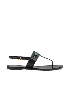 Gucci Siryo Thong Sandals in Nero - Black. Size 36 (also in 35,35.5,37,38,38.5,39,39.5).