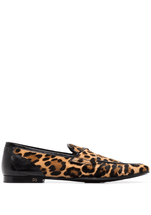 Dolce & Gabbana Erice leopard print loafers - Brown