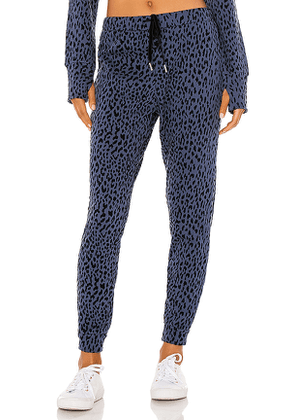 Bobi Flocked Terry Sweatpant in Blue. Size XS, M, L.
