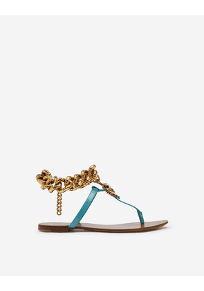 Dolce & Gabbana Loungewear Collection - Devotion flip flops in polished calfskin LIGHT BLUE female 37.5