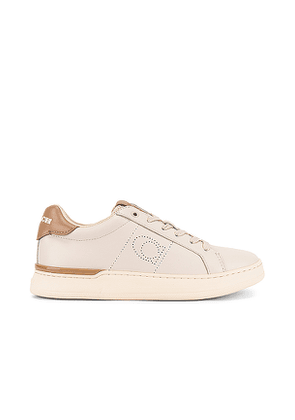 Coach Lowline Sneaker in Taupe. Size 5, 5.5, 7, 8, 8.5, 9, 9.5.