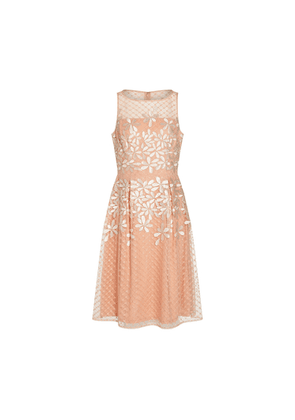 Adrianna Papell Embroidered Fit And Flare