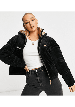 ellesse cropped velour puffer jacket in black and gold - exclusive to ASOS