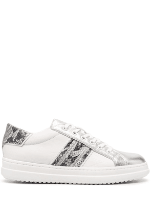 Geox Pointose low-top sneakers - White