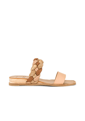 Dolce Vita Persey Sandal in Neutral. Size 7.5, 8, 8.5, 9, 9.5, 10.