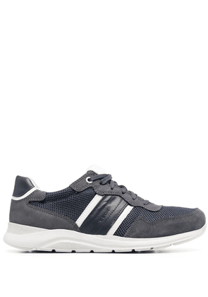 Geox Damiano low-top sneakers - Blue