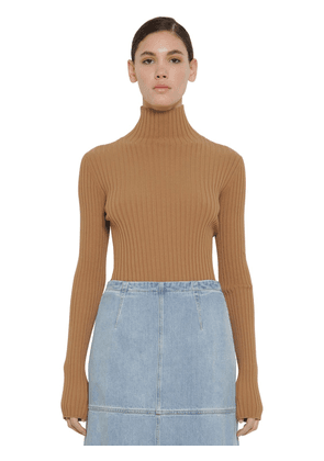 Viscose Rib Knit Sweater