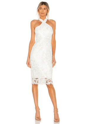 LIKELY Lace Carolyn Dress in White. Size 0, 2, 4, 6, 8.